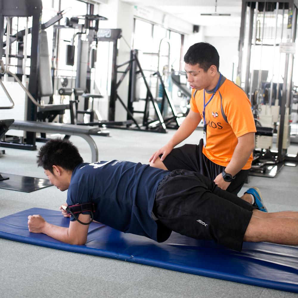 体幹トレーニング<br /> (1回30分)